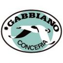 gabbiano_03