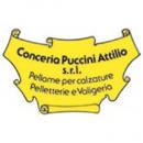 puccini attilo 03 - puccini-attilo_03