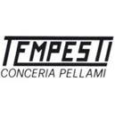 tempesti_03