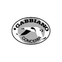 conc_gabbiano