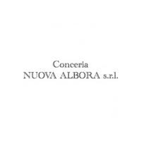 conc_nuovaalbora